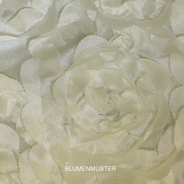 Bordüre Bändchen-Spitze auf Platin Taft in weiß / weiß