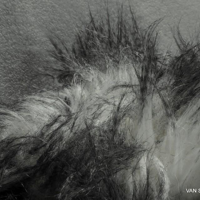 Hochwertige Tierfell Webpelz Optik in Schwarz-Weiß | Ansicht: Hochwertige Tierfell Webpelz Optik in Schwarz-Weiß