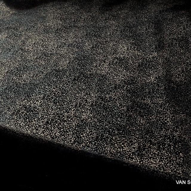 Mini printed Stretch Velvet Ventosa | View: Mini printed Stretch Velvet Ventosa in black-nougat