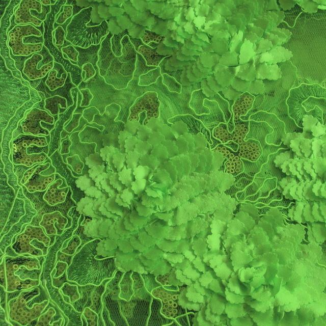 Blumen Bordüren Spitze in Pistazien / grün