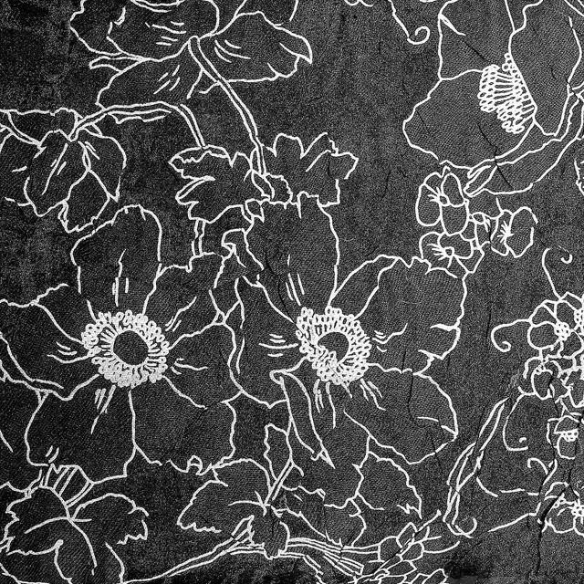 Burnout Flower Jacquard Schwarz Weiß