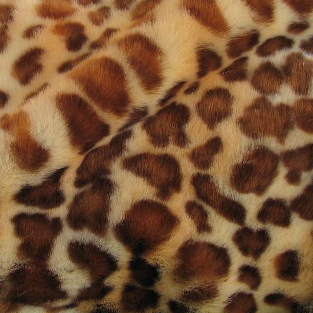 Leopard Pelzimmitat